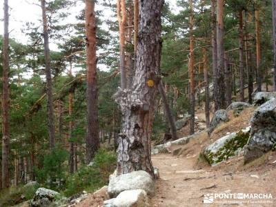 Siete Picos:Senda Herreros,Camino Schmid(Schmidt); clubs en madrid; club de montañismo madrid;sende